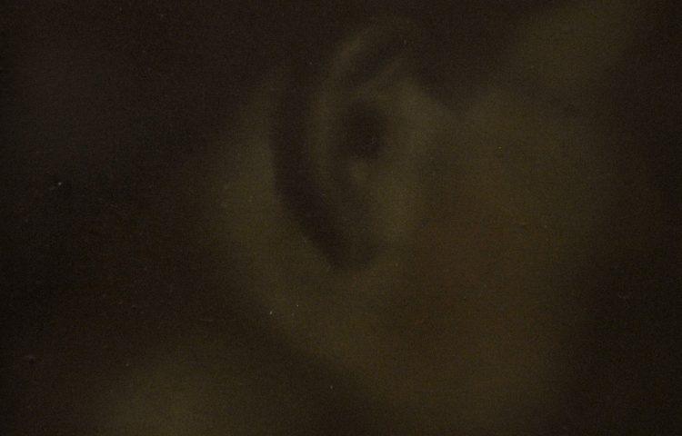 Voci, 2011. Olio su tela, 45x30